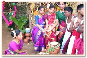 Indian Festivals Pongal | www.pixshark.com - Images ...
